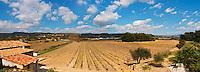 Panoramic view over the vineyard blue sky and white clouds Grape variety Cinsault and Mourvedre Chateau Vannieres (Vannières) La Cadiere (Cadière) d'Azur Bandol Var Cote d'Azur France