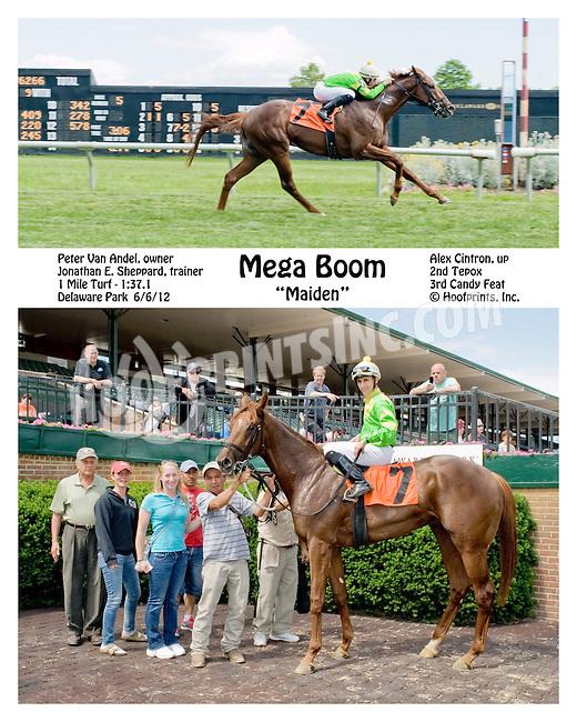 Mega Boom winning at Delaware Park on 6/6/12
