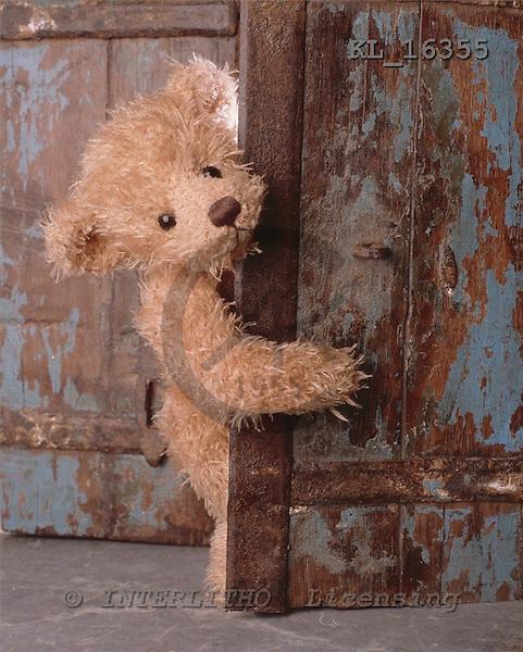 Interlitho, CUTE ANIMALS, teddies, paintings+++++,bear,door,KL16355,#ac#