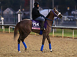 October 30, 2018 : Jaywalk in preparation for the Breeders' Cup on October 30, 2018 in Louisville, KY.  Candice Chavez/ESW/CSM