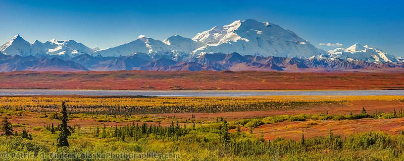 Autumn tundra colors and Mt. Denali, Denali National Park, Alaska.