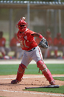 GCL Nationals catcher Jose Cabello (22) throws to first base during the first game of a doubleheader against the GCL Marlins on July 23, 2017 at Roger Dean Stadium Complex in Jupiter, Florida.  GCL Nationals defeated the GCL Marlins 4-0.  (Mike Janes/Four Seam Images)