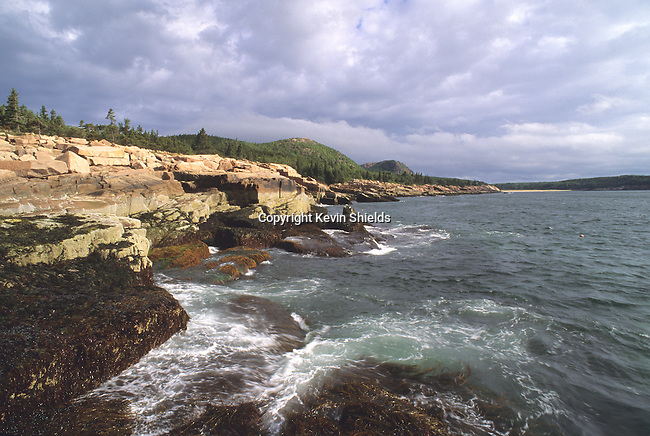 Rocky coast of Maine at Acadia Natiuonal Park, Maine, USA