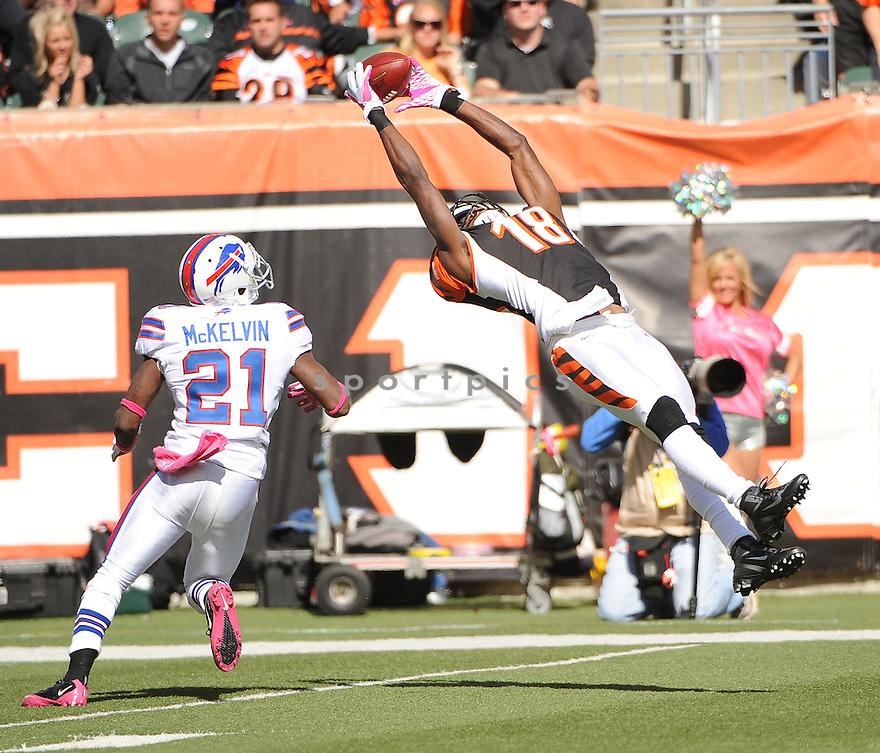 AJ GREEN, of the Cincinnati Bengals in action during the Bengals game against the Buffalo Bills on October 2, 2011 at Paul Brown Stadium in Cincinnati, OH. The Bengals beat the Bills 23-20.