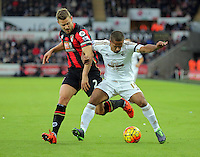 Wayne Routledge of Swansea (R) is challneged by Simon Francis of Bournemouth during the Barclays Premier League match between Swansea City and Bournemouth at the Liberty Stadium, Swansea on November 21 2015
