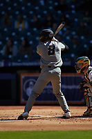 Seth Halvorsen (8) of the Missouri Tigers at bat against the Baylor Bears in game one of the 2020 Shriners Hospitals for Children College Classic at Minute Maid Park on February 28, 2020 in Houston, Texas. The Bears defeated the Tigers 4-2. (Brian Westerholt/Four Seam Images)