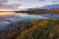 Small lake in summer on Gimsøy, Lofoten Islands, Norway
