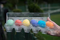 Washington DC, April 17, 2017, USA:  President Donald J Trump and First Lady Melania Trump welcome visitors to the South Lawn of the White House for the 139th Annual Easter Egg roll and event in Washington DC.  These are the eggs used in the Easter egg roll.  <br /> CAP/MPI/LYN<br /> &copy;LYN/MPI/Capital Pictures