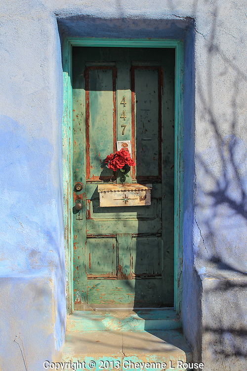 Green Door with Red Flowers - Arizona