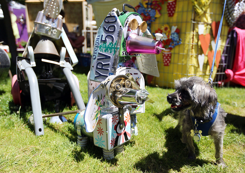 A dog contemplates a dog sculpture made by local artist Betsy Ellen Soifer at the annual Recycled Art Fair in Esther Short Park in downtown Vancouver Sunday June 26, 2016.  (Photo by Natalie Behring for the Columbian)