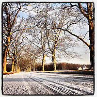 The morning sun lights up trees lining a snowy road into Tyler State Park near Newtown, Pennsylvania, February 6, 2013.