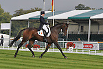 Sarah Wardell Eventing