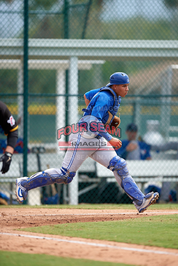 Toronto Blue Jays Javier Hernandez (20) during a minor league Spring Training game against the Pittsburgh Pirates on March 24, 2016 at Pirate City in Bradenton, Florida.  (Mike Janes/Four Seam Images)