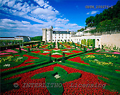 Tom Mackie, FLOWERS, photos, Chateau Villandry & Garden of Love, Loire Valley, France, GBTM200276-1,#F# Garten, jardín