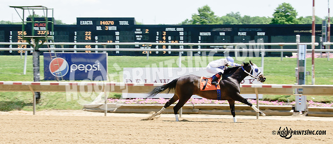 Don's Honour winning at Delaware Park racetrack on 6/28/14