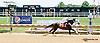 Don's Honour winning at Delaware Park racetrack on 6/28/14