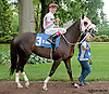 Orange's Lil Sis before Dashing Beauty Stakes  at Delaware Park on 6/27/13
