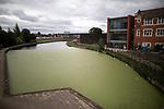 15/08/2018 Failsworth Algae