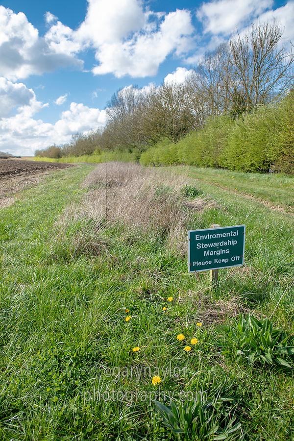 Enviironmental stewatdship margin - Norfolk, April