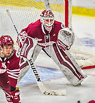 25 November 2014: University of Massachusetts Minutemen Goaltender Henry Dill, a Freshman from Columbus, Ohio, in third period action against the University of Vermont Catamounts at Gutterson Fieldhouse in Burlington, Vermont. The Cats defeated the Minutemen 3-1 to sweep the 2-game, home-and-away Hockey East Series. Mandatory Credit: Ed Wolfstein Photo *** RAW (NEF) Image File Available ***