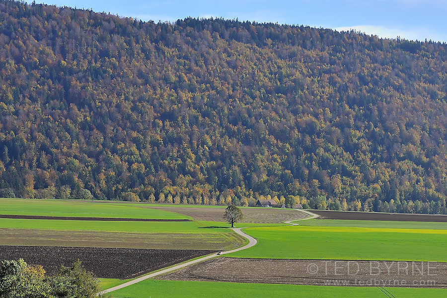 A car descends a picturesque country road in the Val-de-Ruz, Switzerland