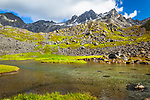 Reed Lakes and Talkeetna Mountains with fresh green grass. Hatcher Pass, Mat-Su Valley, Southcentral Alaska, Summer.