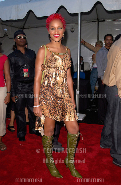 Rap star EVE at the 6th Annual Soul Train Lady of Soul Awards in Santa Monica, California.