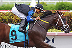 June 29, 2019:  #9 Chance It (FL) with jockey Edgard Zayas on board, breaks his maiden on Summit of Speed Day at Gulfstream Park in Hallandale Beach, Florida, on June 29, 2019. LizLamont/Eclipse Sportswire/CSM