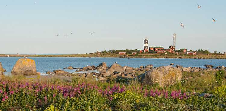 Summer morning panorama at Norrskär Lighthouse midway between Sweden and Finland in the Gulf of Bothnia