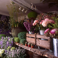 Inside florist Sue Daybell's garden room, filled with many varieties of flowers.