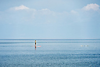 Woman paddle boarding and viewing a jumping school of fish.