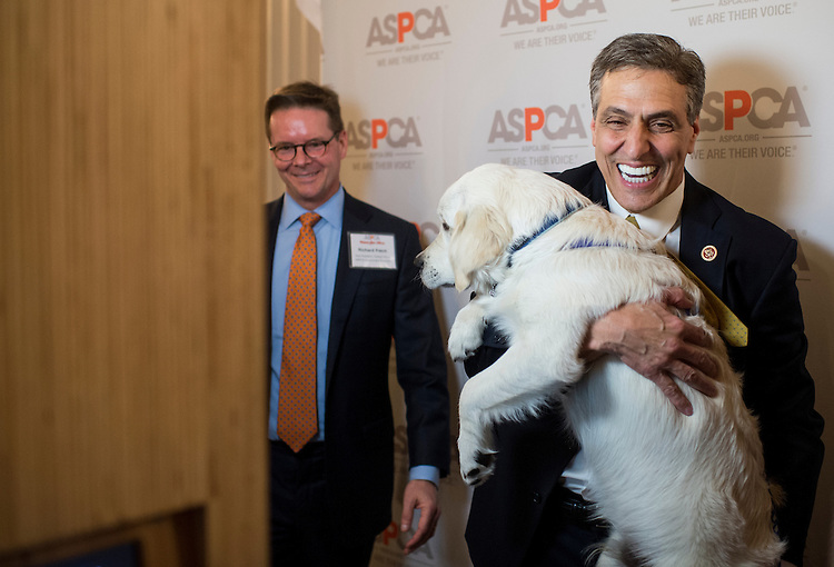 "UNITED STATES - APRIL 4: Rep. Lou Barletta, R-Pa., poses at the photo booth with his dog Reilly during the Animal Procurement Conference with the American Society for the Prevention of Cruelty to Animals on ""Paws for Love"" pet adoption event in the Cannon Caucus Room on Friday, April 4, 2014. (Photo By Bill Clark/CQ Roll Call)"