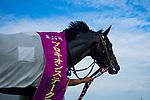 07-07-19 Procyon Stakes Chukyo Japan