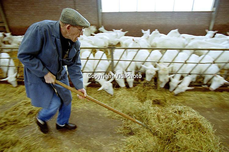 Foto: VidiPhoto..DEN HAAG - Het gaat goed met het imago van de boer. Steeds  meer mensen vinden dat agrariërs goed omgaan met het milieu,  belangrijk zijn voor een goede economie, sympathiek en  internationale topondernemers zijn. De boeren zelf zijn ook vaker  trots op hun vak dan een half jaar geleden, zo blijkt uit een  enquete van de campagne Boeren en Tuinders, Ondernemers van Nature.
