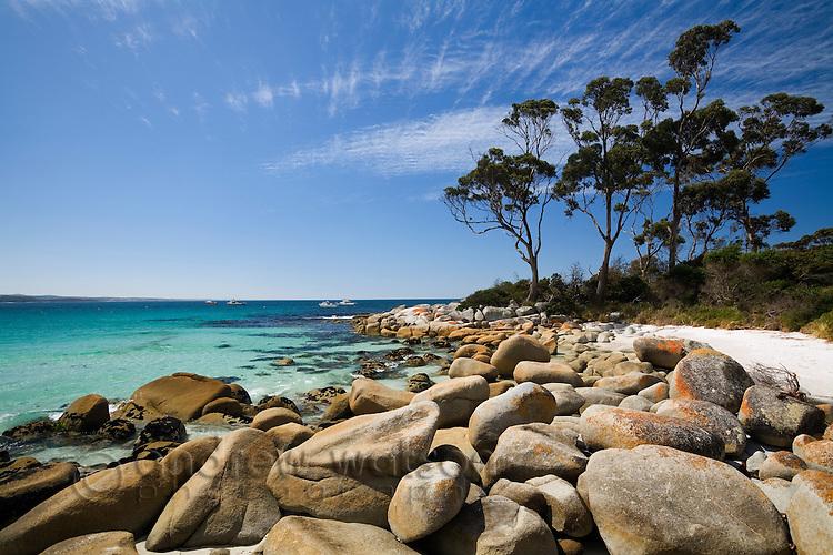 Scenic coastline at Binnalong Bay - in the Bay of Fires region.  St Helens, Tasmania, AUSTRALIA