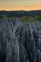 View of tsingy rock landscape at dawn