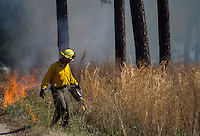 NWA Democrat-Gazette/JASON IVESTER<br /> Mark Clippinger, park superintendent, helps start a fire line Thursday, March 2, 2017, for a prescribed burn at Hobbs State Park-Conservation Area. The burn covered 25 acres near the intersection of Highway 12 and Highway 127.