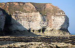 Coastal scenery at Flamborough Head, Yorkshire, England
