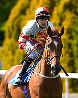 Whispering Sands ridden by Richard Kingscote goes down to the start of The Smith & Williamson Fillies' Novice Stakes (Class 5 during Afternoon Racing at Salisbury Racecourse on 17th May 2018