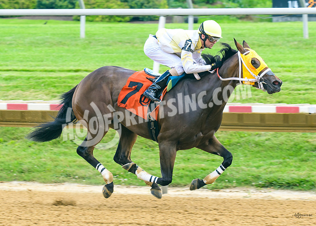 Sweethearted winning at Delaware Park on 7/1/17