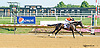 Alice Roadtrain winning at Delaware Park on 8/29/15