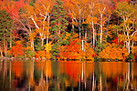Roger Crowley / CrowleyPhotos.com..Fall colors on Ricker Pond in Gorton State Park in Vermont.
