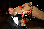 Chair Mark Grierson with the camel outside the Children's Museum &quot;Arabian Nights&quot; Gala at The Corinthian Saturday  Oct. 14,2006.(Dave Rossman/For the Chronicle)<br />