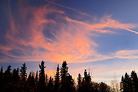 Sunset clouds over boreal forest, Ear Falls, Ontario, Canada