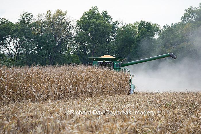 63801-07013 Farmer harvesting corn, Marion Co., IL
