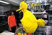 "First Lady Michelle Obama participates in a ?Let's Move!? and ""Sesame Street"" public service announcement taping with Big Bird in the White House Kitchen, February 13, 2013. .Mandatory Credit: Lawrence Jackson - White House via CNP"