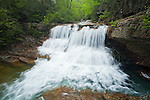 Saint Mary's Falls in heavy spring flow, Saint Mary's Wilderness Area