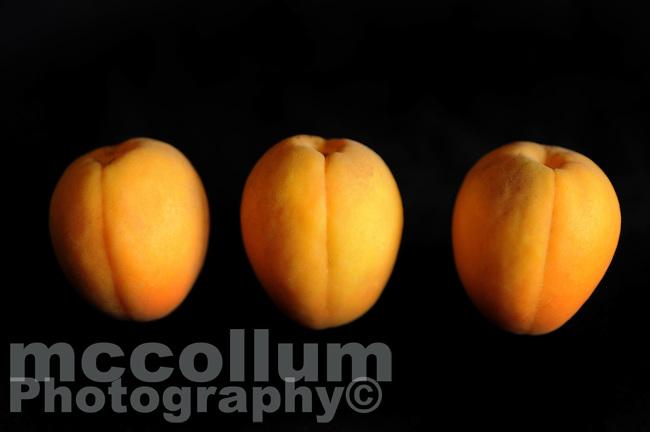 Michael McCollum.Apricots, Patterson California