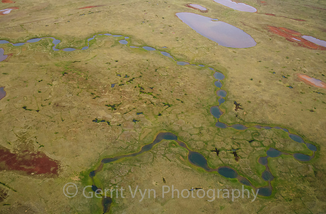 Aerial view of a beaded stream south of Teshekpuk Lake. Arctic Coastal Plain Alaska. July.