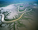 Australia, Western Australia, Kimberley region, aerial of meandering river in mudflats in rainy season, mangrove trees lining shores of main river and tributaries.